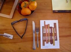model-disciple