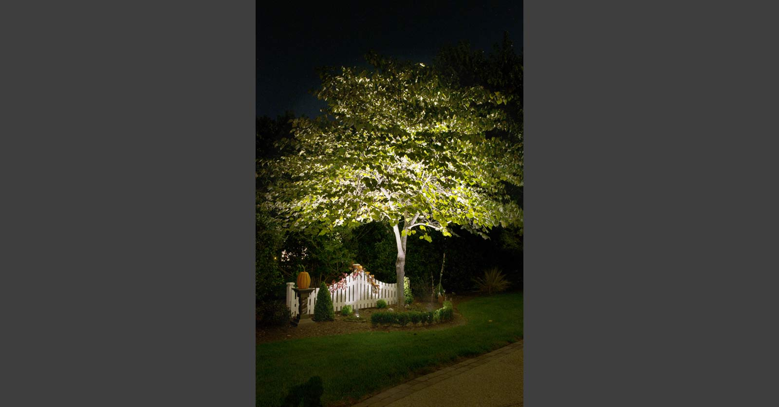 knight scapes landscape lighting