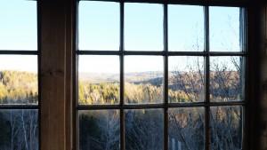 windows with condensation