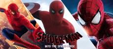 Spider-Man - Hulk