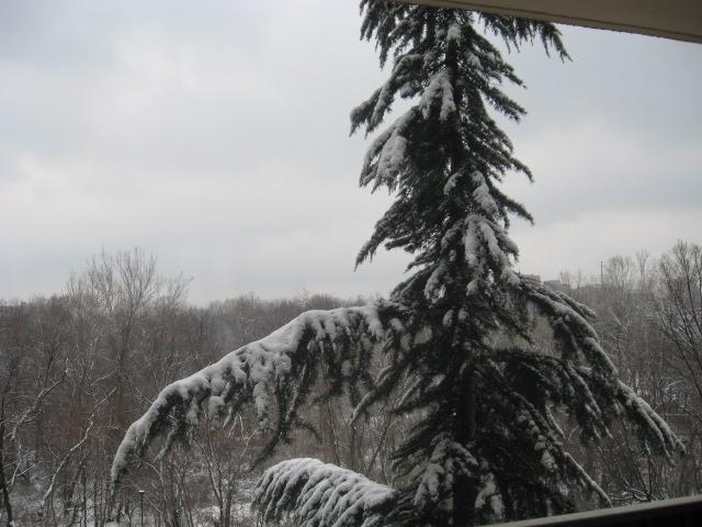 09_1st-snow-001