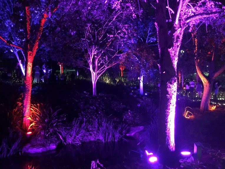 A winding queue meanders through the Enchanted Gardens.