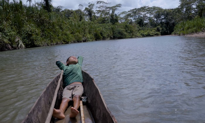 Back to nature: the story of one family's retreat into the Amazon forest to escape Covid