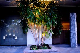 palm_springs_lighting_design_0967