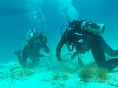Defensie ruimt 9 vliegtuigbommen bij Aruba