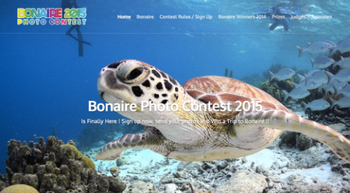 Bonaire Photo Contest: Once a Visitor, Always a Friend   Bonaire Photo Contest