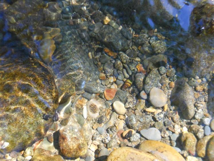 Salmon River Rocks