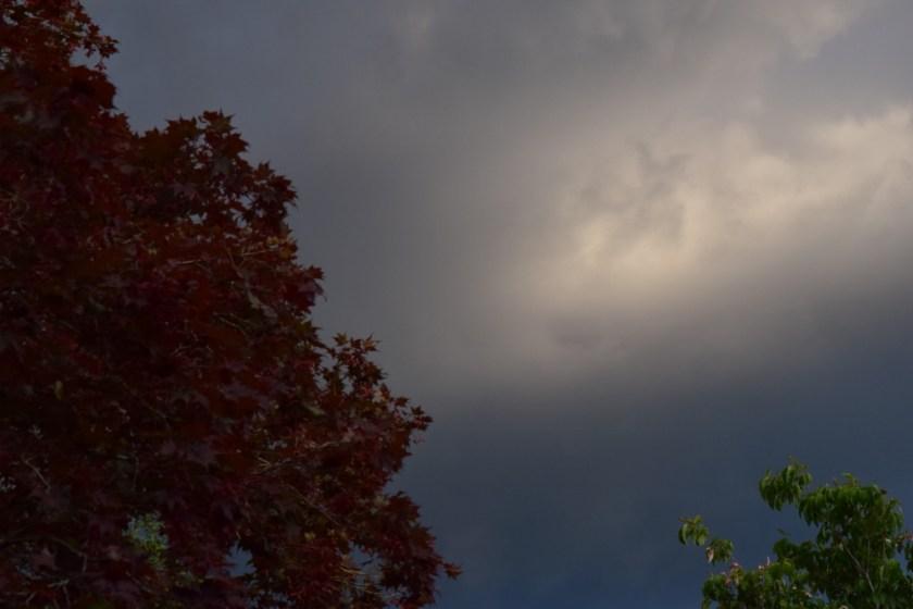 sky7 (1024x683)