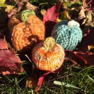 Wee Pumpkin's by Carla