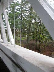 bridge-moss 1