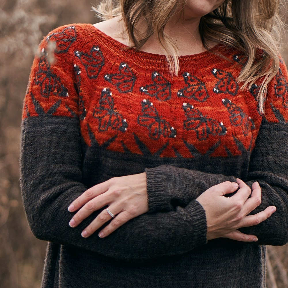A closeup of a handknit sweater. The yoke is a vibrant red orange with monarch butterfly motifs. The body is dark gray.