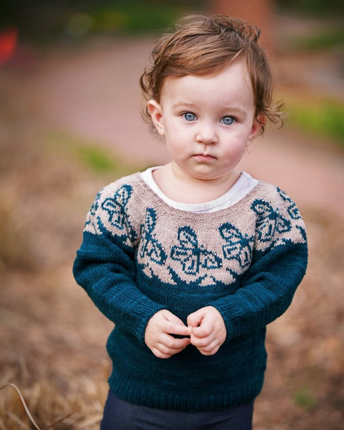 A baby wears a hand knit sweater that is teal and gray with butterfly motifs in the yoke.