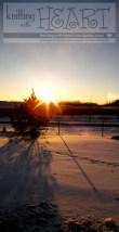 Snowy pine tree sunset.