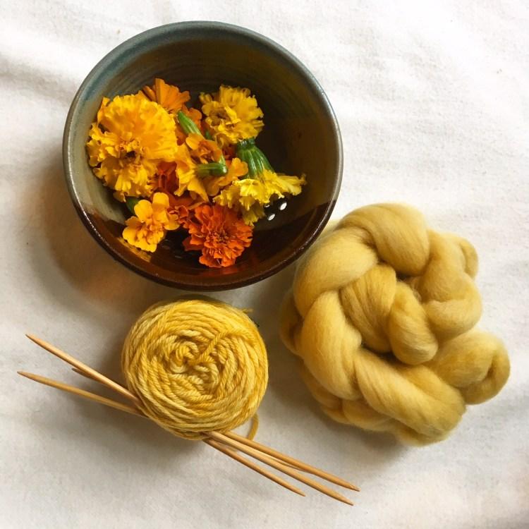 Marigold Natural Dye Kit