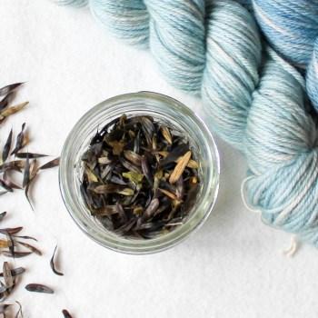 Seeds/Dye Materials