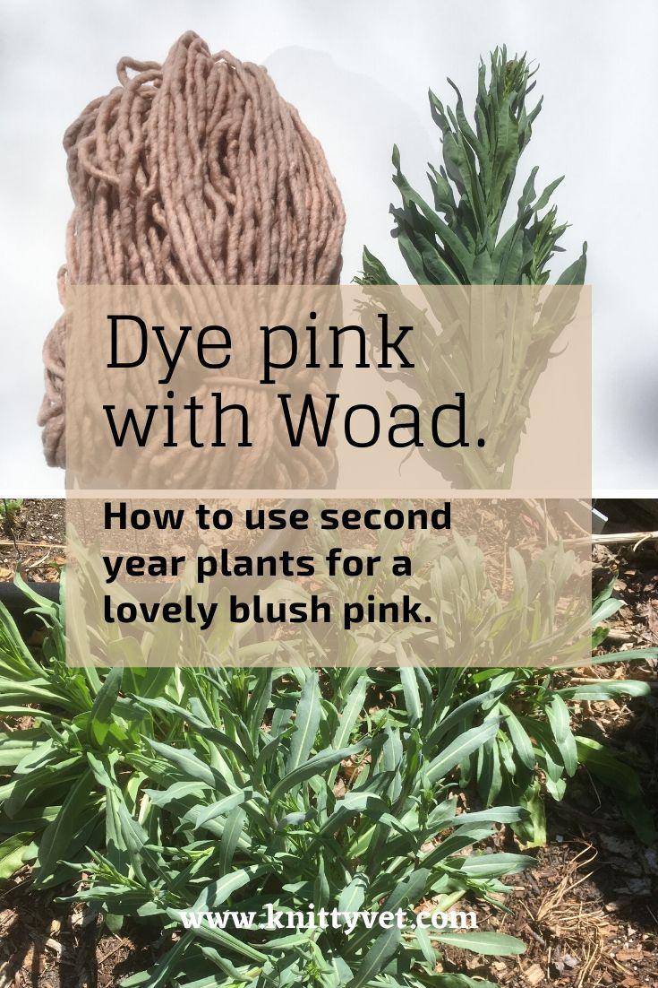 Woad Pink