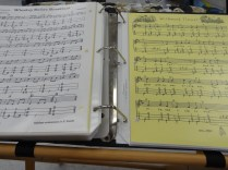 DSC04421-Dulcimer Music (2)