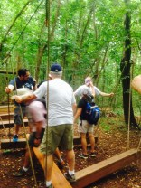 Amann Girrbach America Team Building Event WWC Low Ropes Course