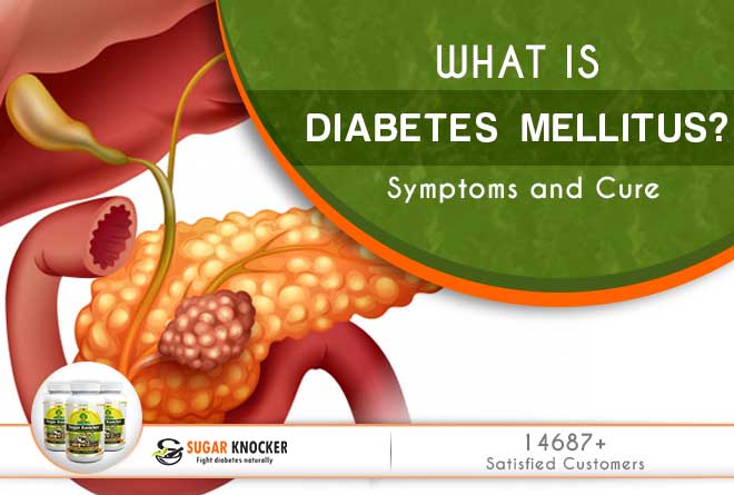 What is Diabetes Milletus