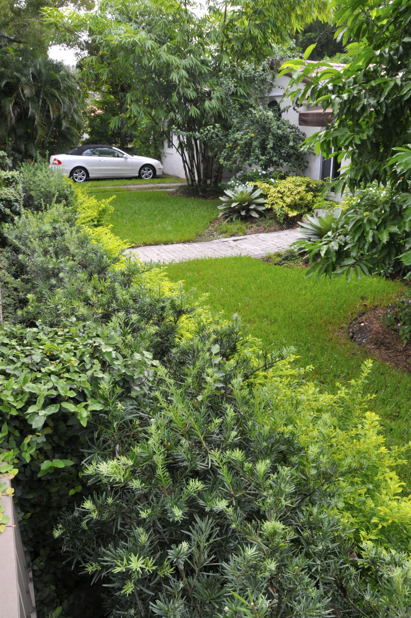 Landscape ideas South Florida front yard-Garden design on Backyard Landscaping Ideas With Trees id=98645