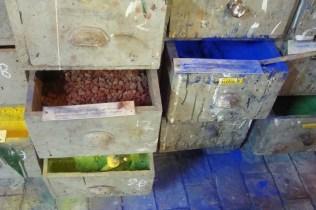 Pigmenten - Pigments