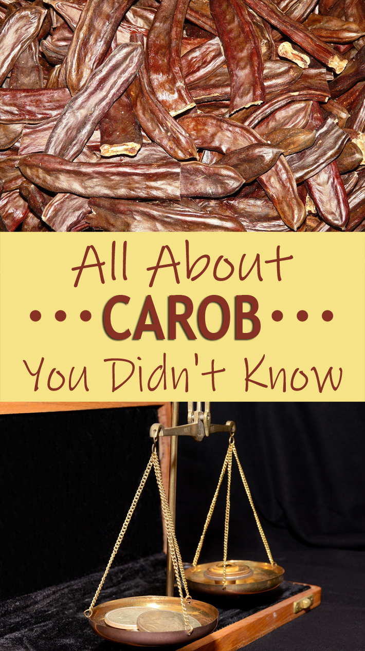 All About Carob You Didn't Know