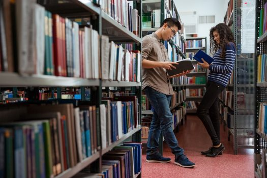 library management system college library sector