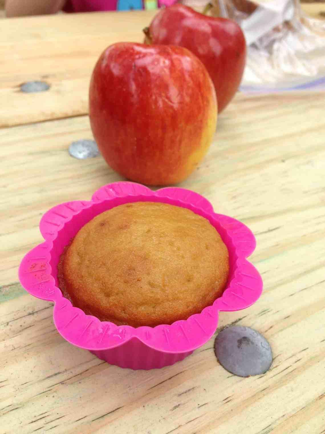Fast, Easy Coconut Flour Cupcakes - Grain Free