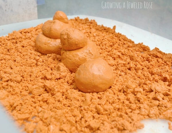 Pumpkin Moon Sand from Growing a Jeweled Rose