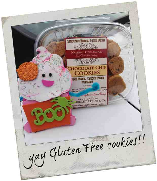 know gluten in Northern California - Gluten free chocolate chip cookies from Natural Decadence in Eureka. Amazing!
