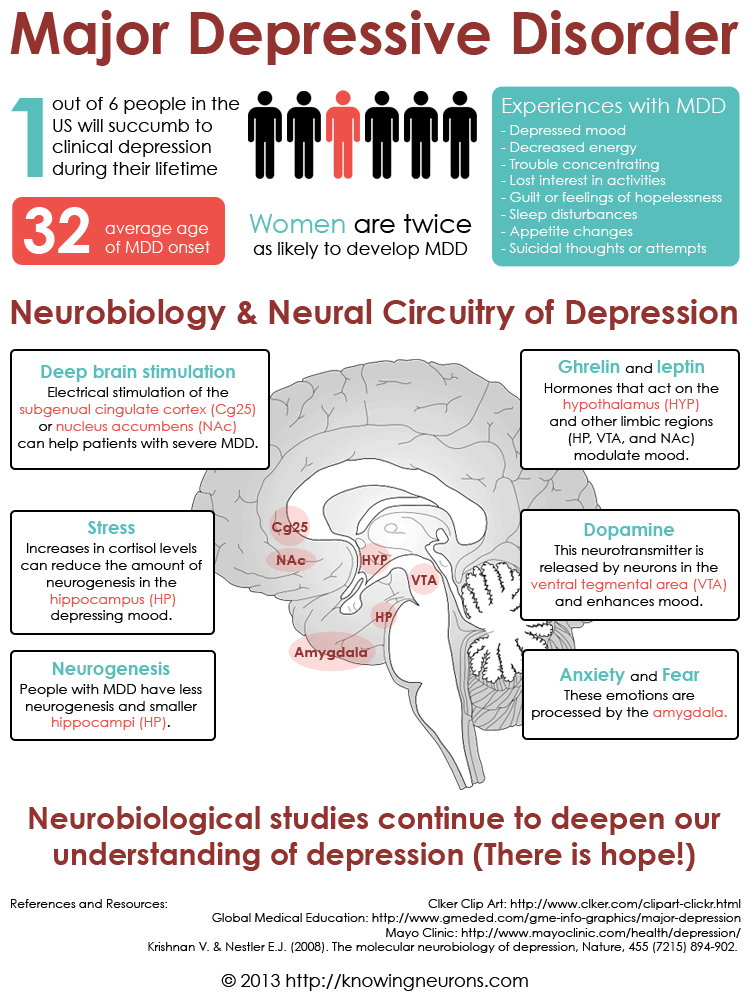 Depression Infographic by Knowing Neurons