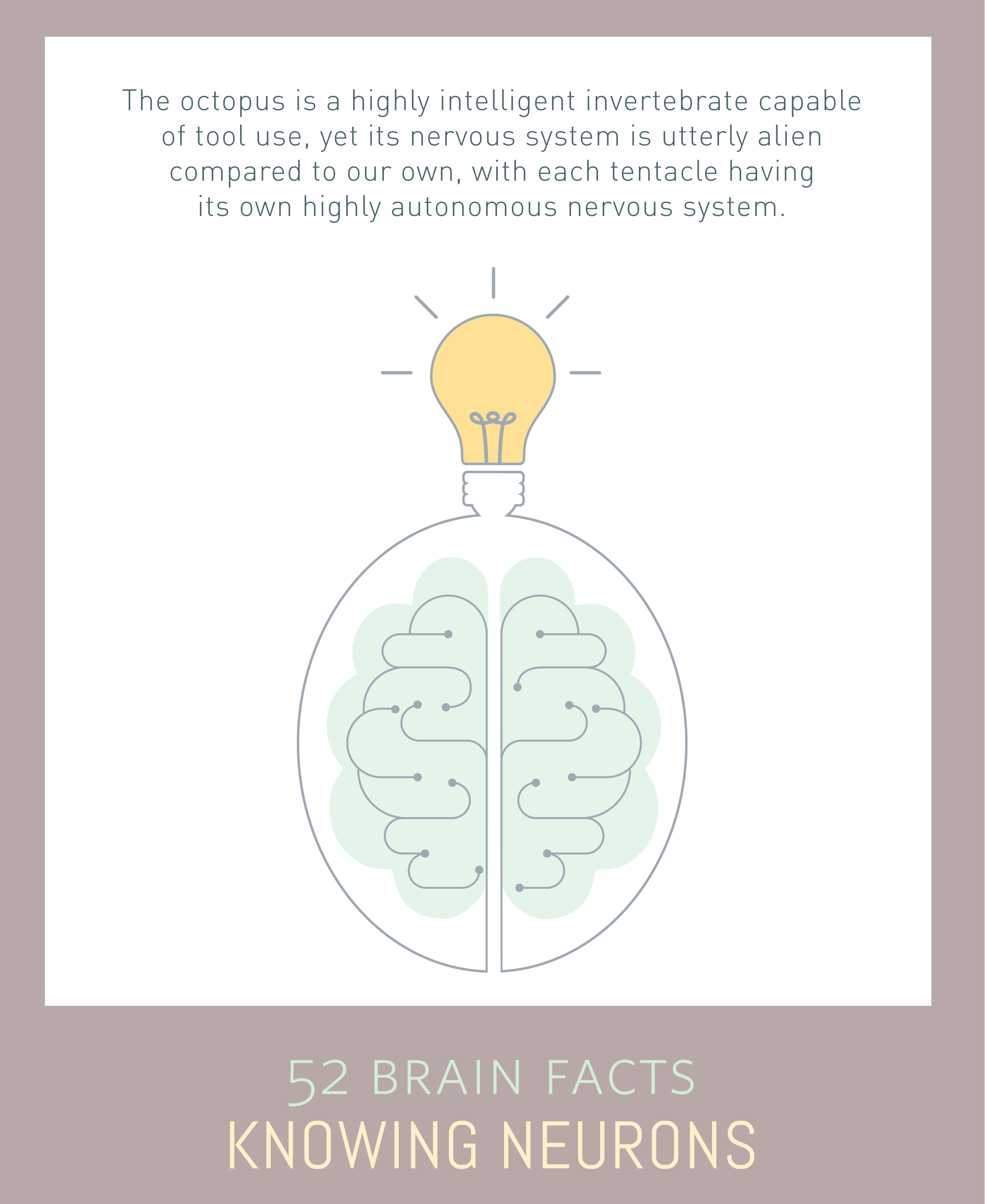Myth or fact? A highly centralized nervous system is necessary for intelligent behaviors.