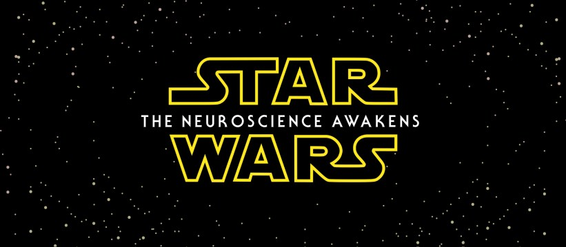 STAR-WARS_Knowing Neurons