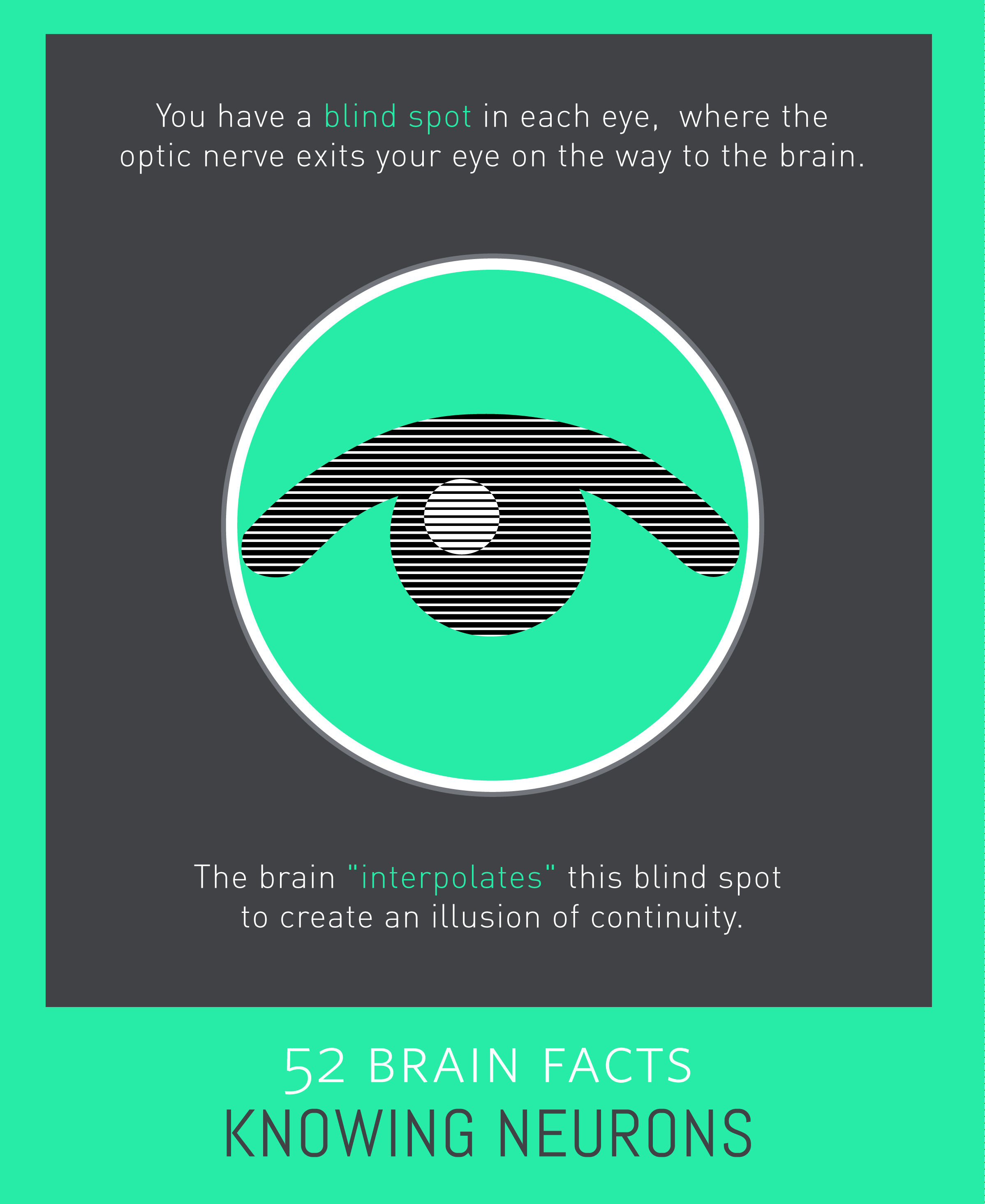 Myth or Fact? Blind spots do not occur in healthy eyes.