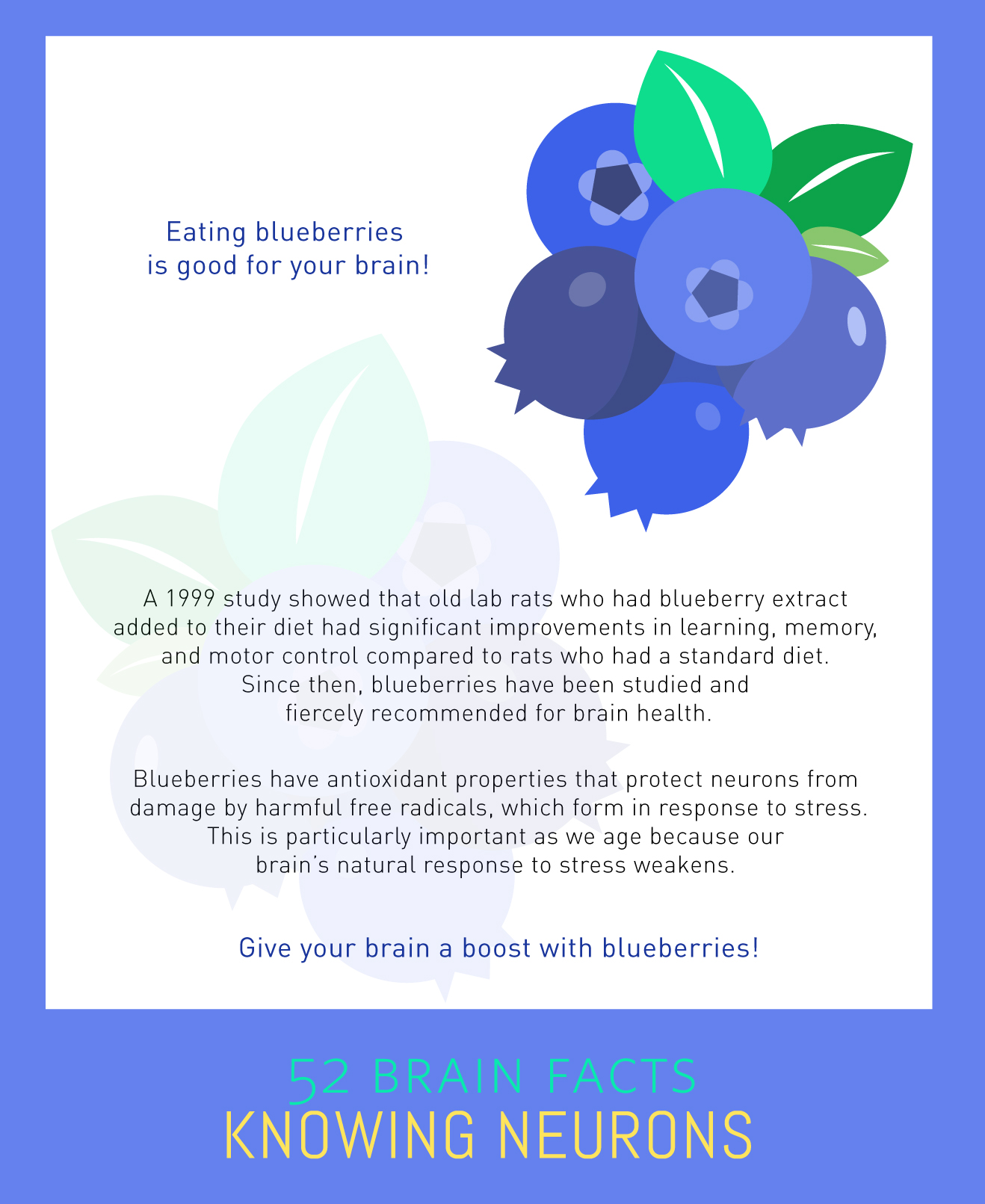 Myth or Fact? Eating blueberries is good for your brain.