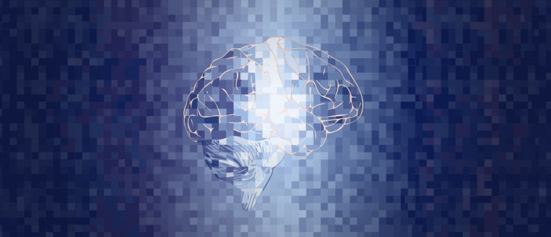A blue and grey pixelated image of the brain as a symbolic representation of voxels, 3D pixels generated by neuroimaging techniques. Illustrated by Jooyeun Lee.