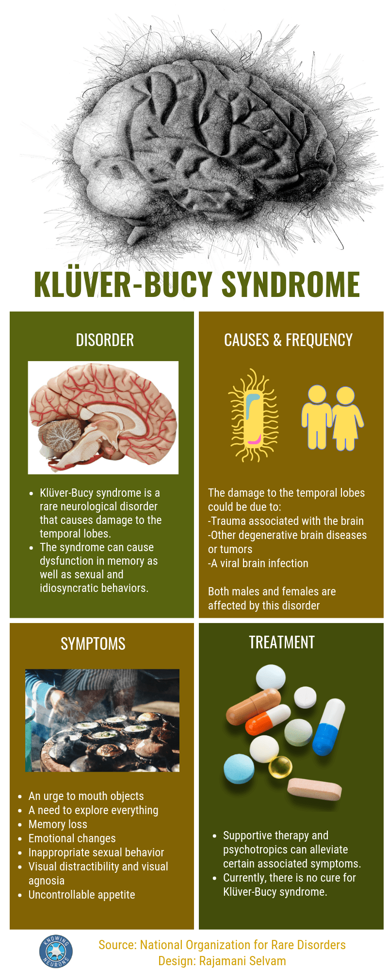 An infographic on Kluver-Bucy Syndrome illustrated by Rajamani Selvam.