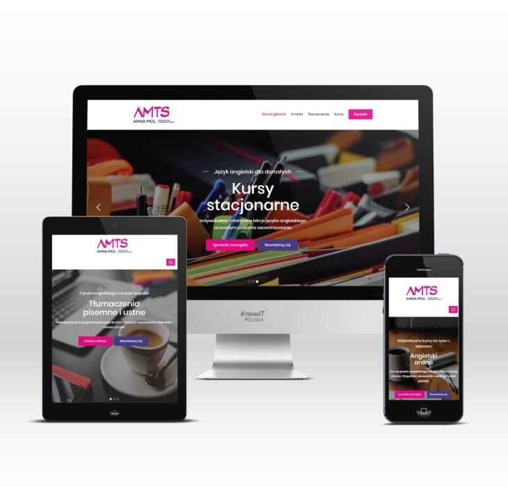 strony-internetowe-torun-projektowanie-stron-internetowych-torun