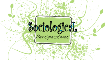 essay on sociology purpose meaning of sociology easy words  perspectives of sociology 3 sociological perspectives explained