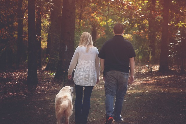 Dog walking can change body shape and size in obese people