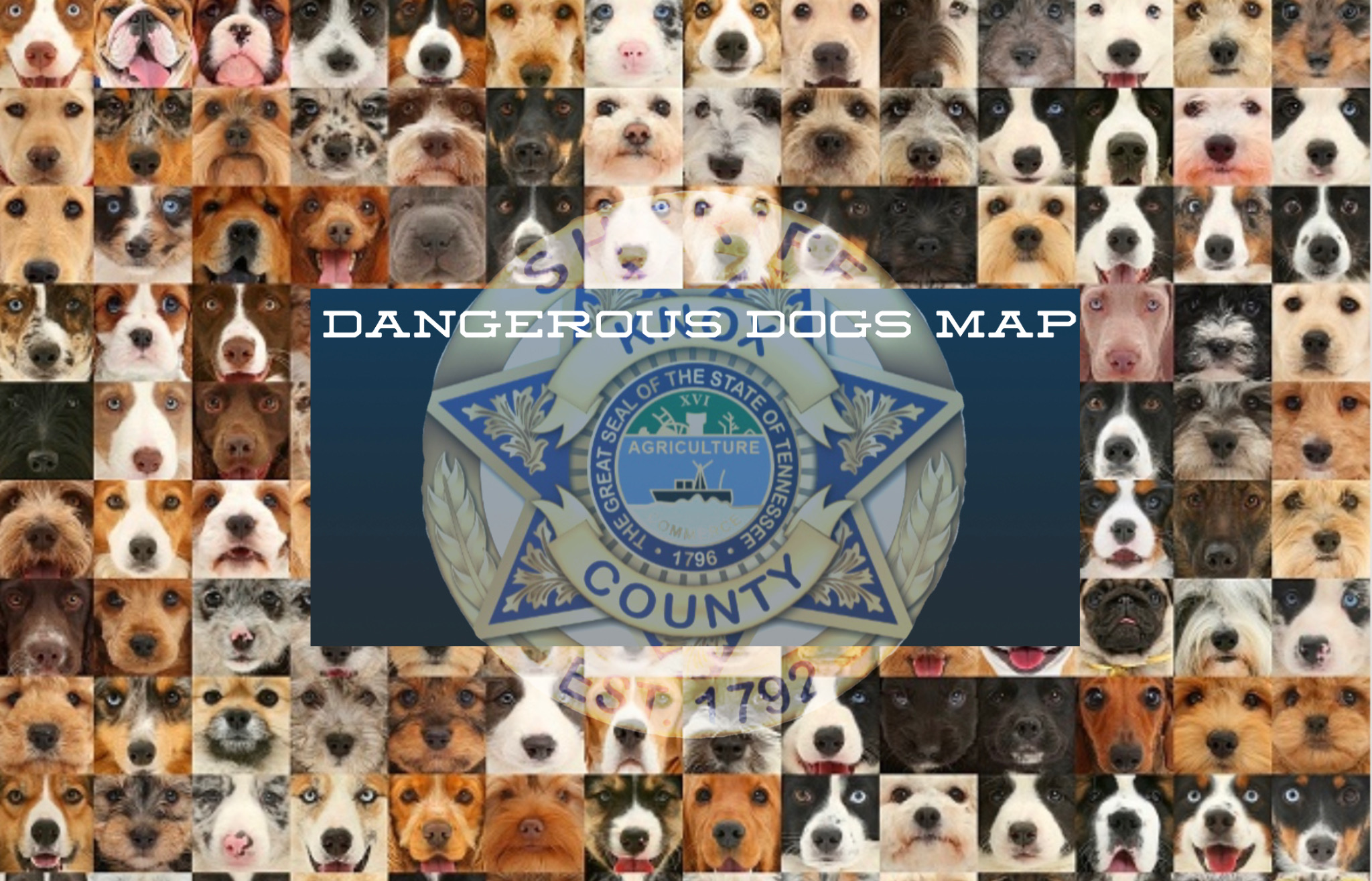 Collage of dogs with KCSO Badge