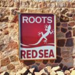 Подробности для участников дайвинг-лагеря Roots Red Sea