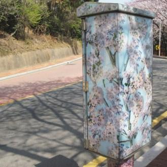 02 Busan MoonTan Road 5