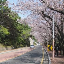 02 Busan MoonTan Road 6