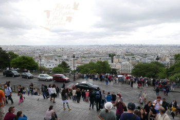 Paris viewpoint 13