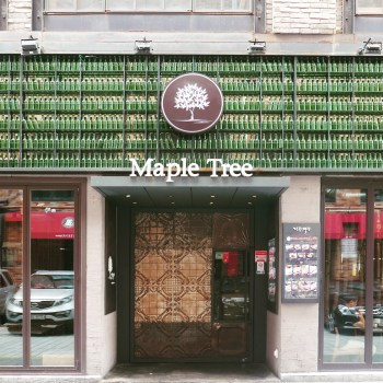 Yummylicious Seoul - Maple Tree