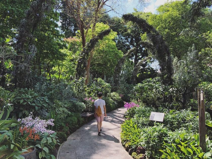 Botanic Gardens 2