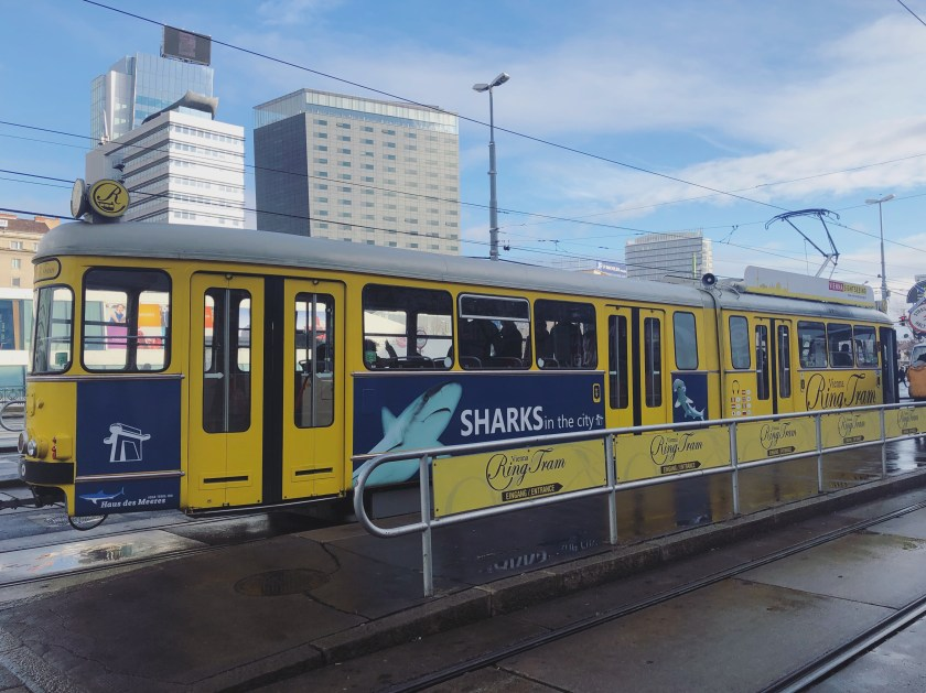 1 Have an Overview of Vienna's Inner City on Vienna Ring Tram