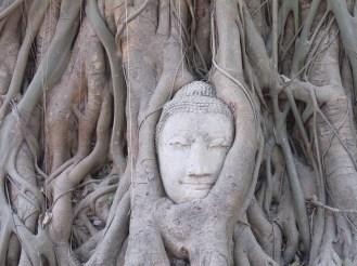 1 - Bangkok Ayutthaya 1