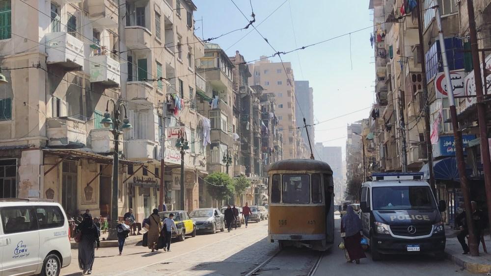 Alexandria 4